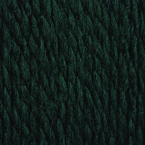 Patons Shetland Chunky Yarn, Rich Teal by Patons (Image #1)