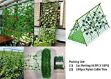 LAVZAN 6.5Ft x 32Ft Trellis Netting With 100 Pcs Nylon Cable Ties Plant Support for Climbing Plants, Vine and Veggie Trellis Net Climbing Frame Garden Fence Net for Flower Plant Fruit (2x10)