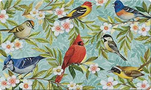 Toland Home Garden Bird Collage 18 x 30 Inch Decorative Floor Mat Colorful Spring Flower Cardinal Jay Doormat Chickadee Hose Holder