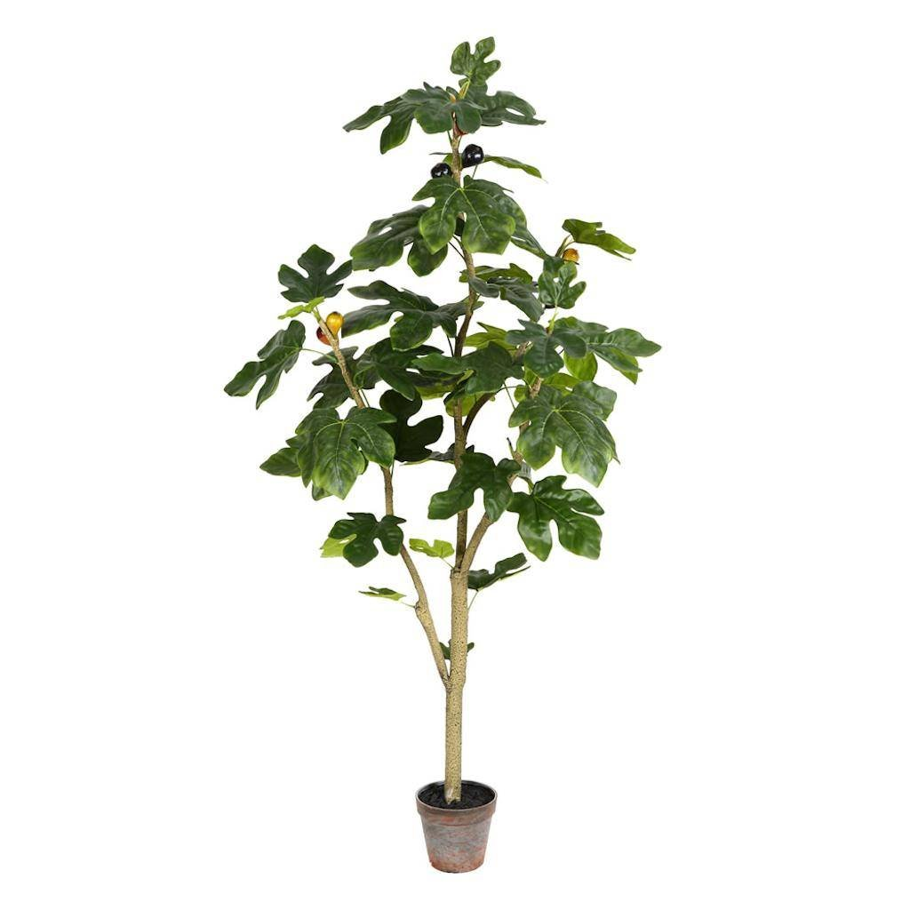 Vickerman TB180448 Green Potted Fig Everyday Tree by Vickerman