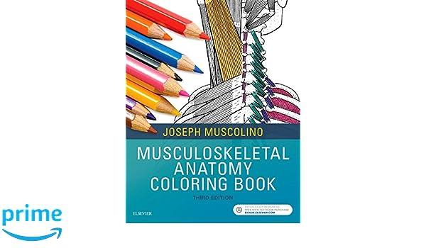 Musculoskeletal Anatomy Coloring Book, 3e: 9780323477314: Medicine ...