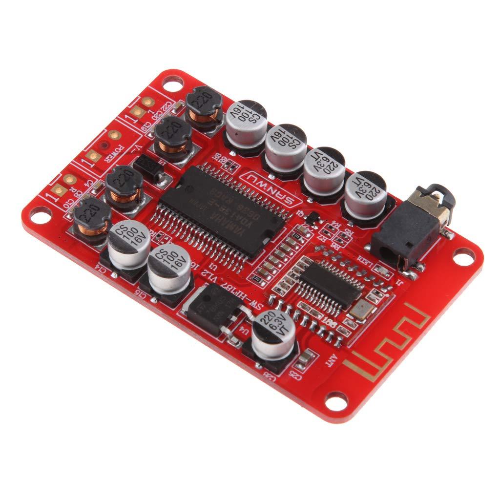 F Fityle Scheda Amplificatore di Potenza Classe D Bluetooth Due Canale DC 12V 2A per Altoparlante Diffusori