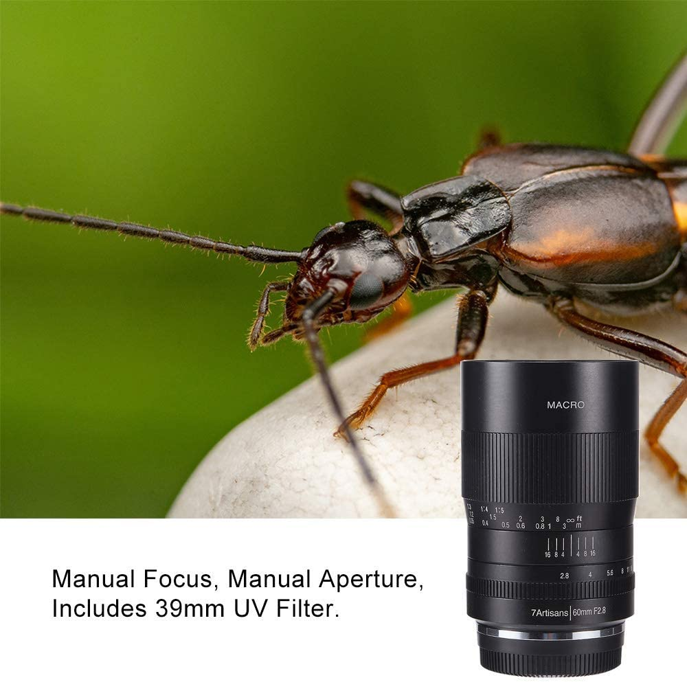 Manual Focus Fixed Lens for Canon RF Mount Mirrorless Cameras W ...