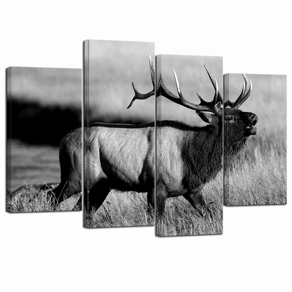 LevvArts - 4 Piece Animal Picture Black and White Bull Elk Canvas Wall Art Painting for Living Room Home Office Decor Modern Wildlife Artwork Framed Gallery Canvas Wrapped Ready to Hang