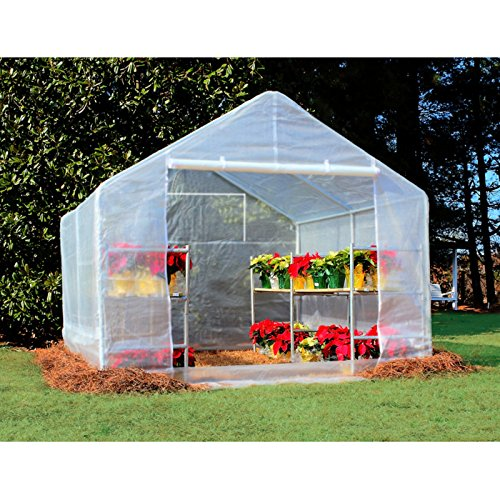 61%2BK0CL2EoL - King Canopy GH1010 10-Feet by 10-Feet Fully Enclosed Greenhouse, Clear