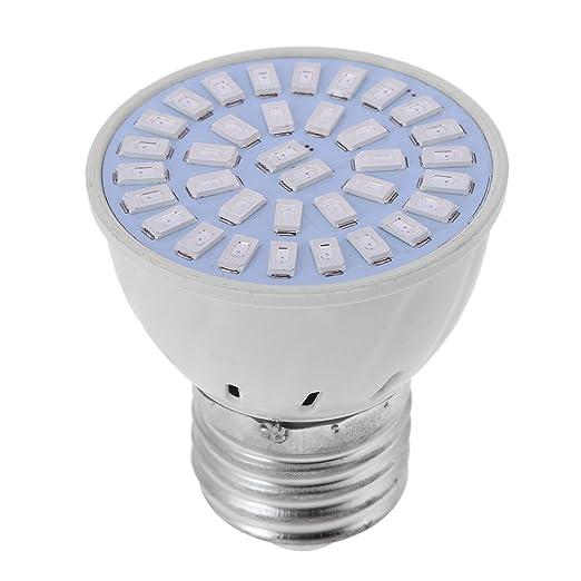 Bombilla LED para Plantas, Domybest Rojo + Azul LED Crezca la Lámpara, para Flores