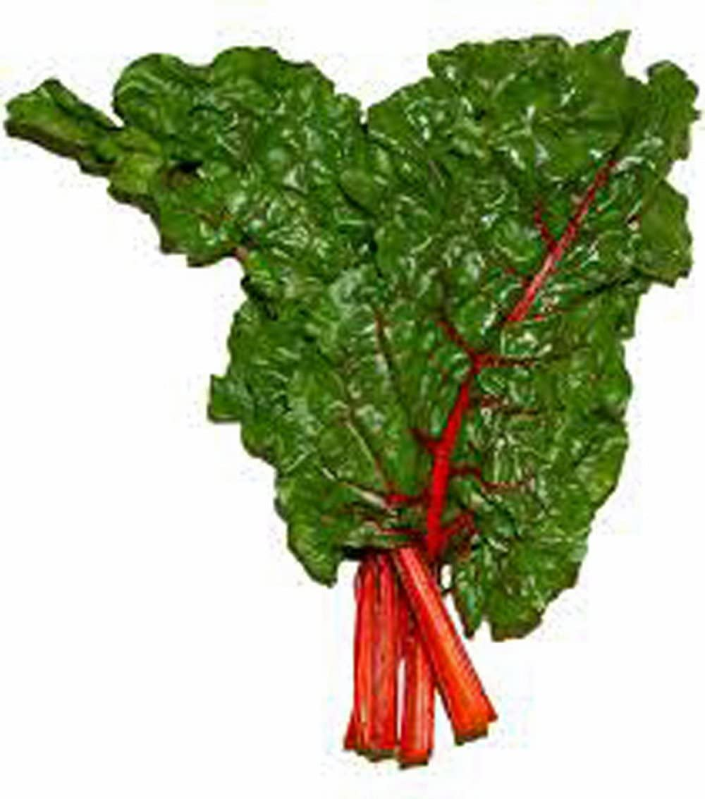 Swiss Chard Seeds, Ruby Red, Heirloom, 25+Seeds, Non GMO