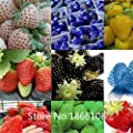200 mixed rainbow strawberry seeds fruit seeds for home garden