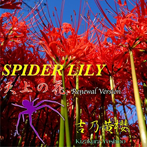 Spider Lily (Renewal version) - Japanese Spider Lily