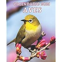 Calendario 2021 Aves: Lunes a Domingo Libro de Calendario Mensual 2021 con Imágenes de Pájaros Hermosos (Spanish Edition…