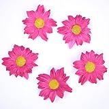 Fiore fucsia, 24 pcs, strame fiori, regali ospite