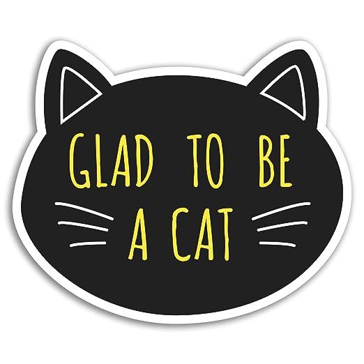 2 x 10 cm divertido del gato pegatinas de vinilo - Gatos ...