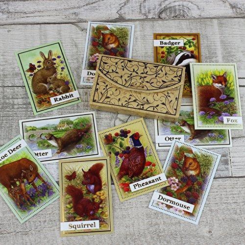Hunkydory Crafts Craft Stack - Great British Wildlife Card Kit STACK013
