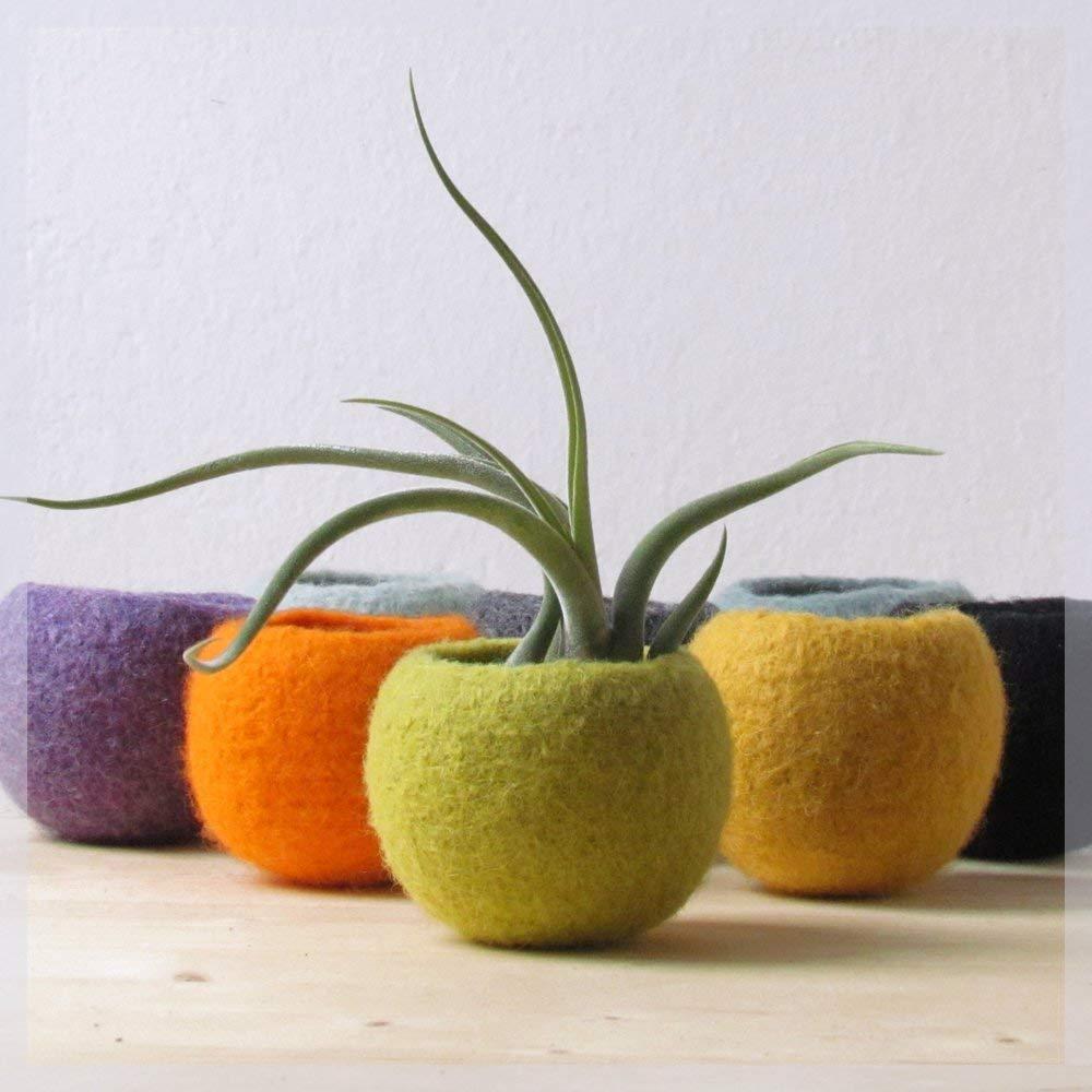Felt succulent terrarium//felted planter felt bowl//Succulent pod//olive green//minimalit design