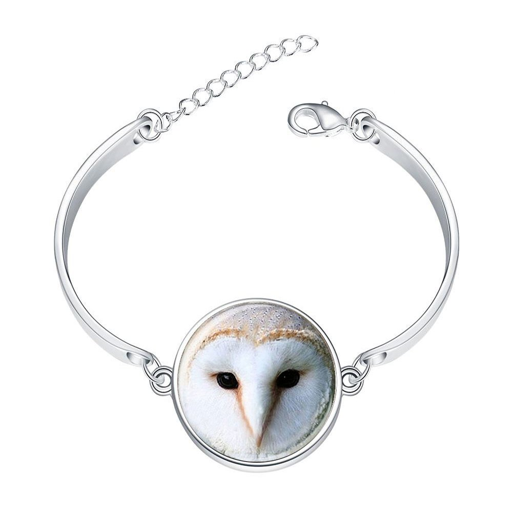 Adjustable Silver Bracelets Animal Barn OwlHand Chain Link Bracelet Clear Bangle Custom Glass Cabochon Charm
