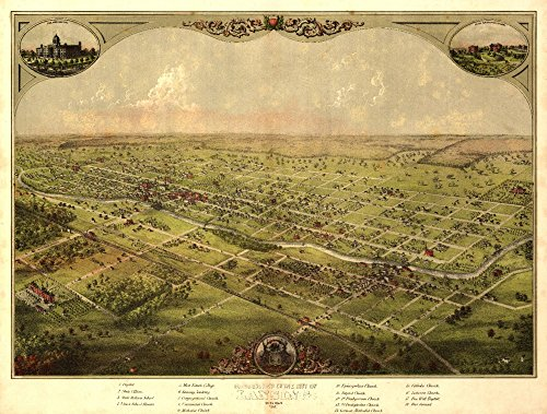 Lansing, Michigan - Panoramic Map (16x24 Fine Art Giclee Gallery Print, Home Wall Decor Artwork Poster) (Lansing Anderson Park)