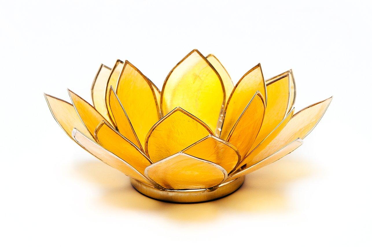 Trouver Quelque Chose différents Jaune Chakra 3Capiz Coque Lotus Thé Lumière Bougie Titulaire, en Bambou, Multicolore Find Something Different 912013
