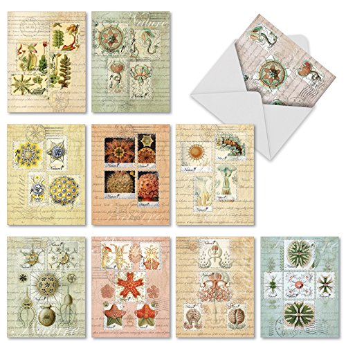 "10 'Vintage Nature' Thank You Cards with Envelopes (Mini 4"" x 5.25""), Greeting Cards with Vintage Plant and Animal Classification Stamps, Grateful Stationery for Weddings, Business, Holidays #M2353TYG - Recycled Business Cards"