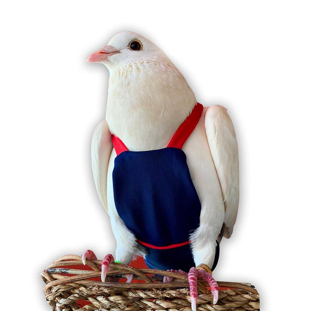 Bev's Bird Boutique - Navy Red Straps Flyper (7) by Bev's Bird Boutique