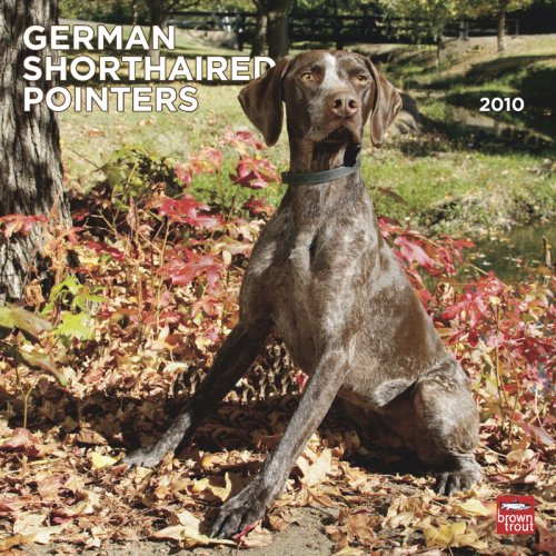 Pointer 2010 Calendar (German Shorthaired Pointers (International) 2010 Square Wall (Multilingual Edition))