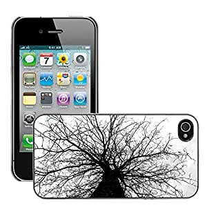 Hot Style Cell Phone PC Hard Case Cover // M00310690 Tree Nature Trunk Autumn // Apple iPhone 4 4S 4G