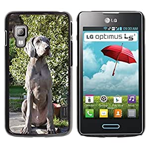 Hot Style Cell Phone PC Hard Case Cover // M00129492 Dog Puppy Hound Weimaraner Eyes // LG Optimus L5 II Dual E455 / E460