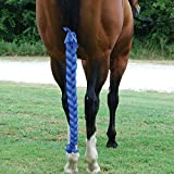 Sleazy Sleepwear For Horses 3 Tube Horse Tail Bag Solids