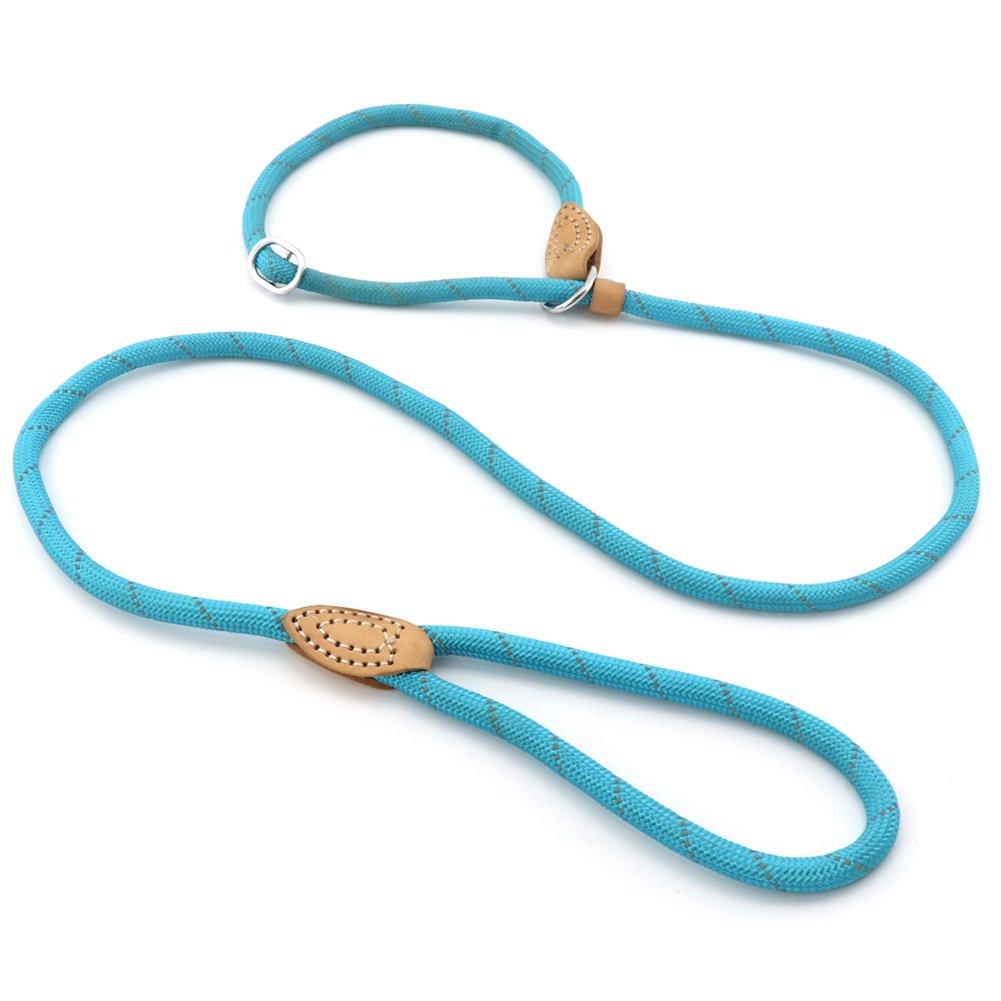 Grand Line Correa Ajustable Cuerda de Nylon para Perros y Gatos Pequeñ os, Medianos, Grandes y Extra Pesados Ideal para Entrenamiento Corriendo- 150cm, Azul Fitam