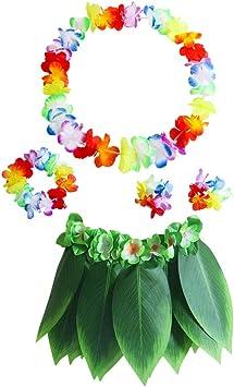 Amosfun Falda Hula de Hoja de Ti Juego de Disfraces Hawaianos con ...