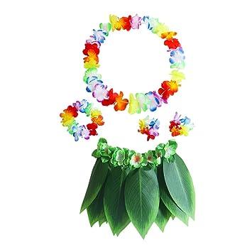Amosfun 5pcs Conjunto de Disfraces de Hula Hawaiana para Adultos ...