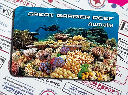 Great Barrier Reef Coral Images Picture Gallery