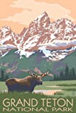 Grand Teton National Park - Moose and Mountains (9x12 Art Print, Wall Decor Travel Poster)