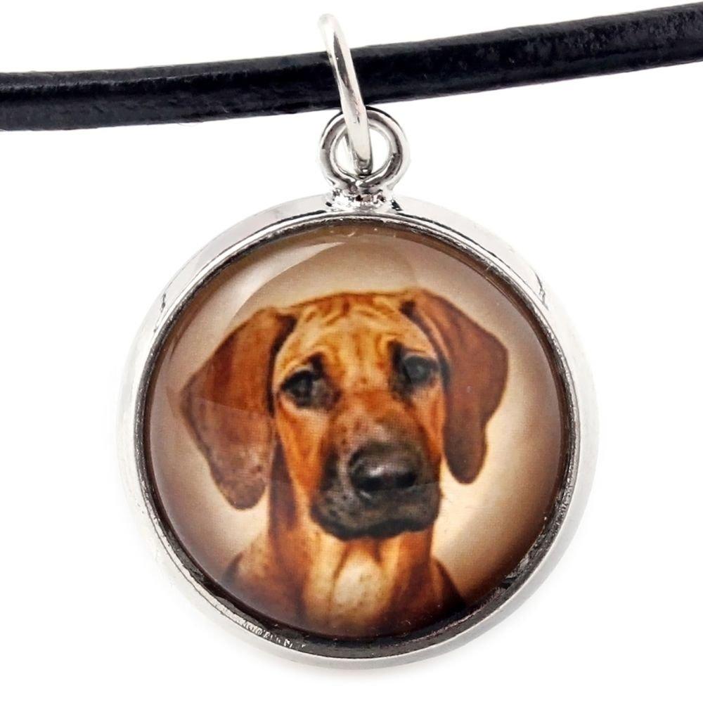 Art Dog Ltd Set of Earrings and Necklace Handmade Rhodesian Ridgeback Photo Jewelry