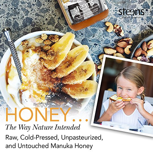 Steens Manuka Honey UMF 24 (MGO 1122) 17.6 Ounce jar | Pure Raw Unpasteurized Honey From New Zealand NZ | Traceability Code on Each Label by Steens (Image #1)