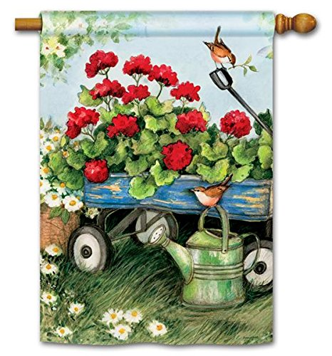 Painted Watering Can (BreezeArt Geraniums by the Dozen 28