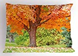 Lunarable Nature Pillow Sham, Vibrant Tree Forest Autumn Season Fall in Woods Scenic Scenery Landscape, Decorative Standard King Size Printed Pillowcase, 36 X 20 inches, Orange Green Brown
