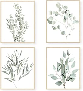 MGahyi Botanical Plant Wall Art Prints, Plant Wall Decor, Boho Wall Decor, Eucalyptus Leaves Prints, Minimalist Plant Pictures, Plant Leaf Posters(Set of 4, 8X10in, Unframed)