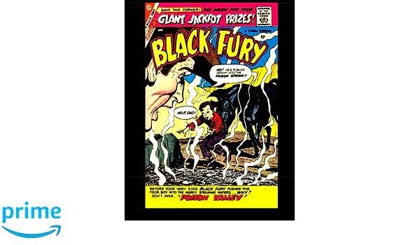 Black Fury #19: Black Fury The Wonder Horse 1959: Kari A ...
