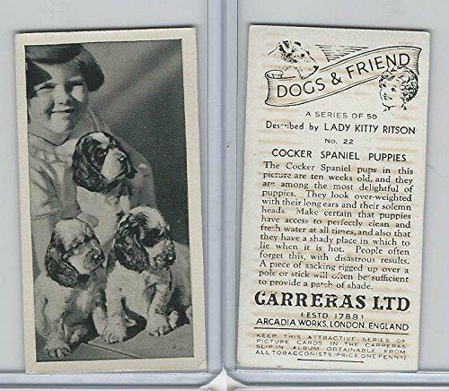 (C18-40 Carreras, Dogs & Friend, 1936, 22 Cocker Spaniel Puppies)
