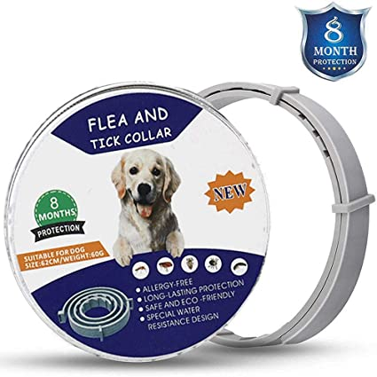 8 Months Effectiveness Protection Large Dog Flea and Tick Collar Adjustable Waterproof Dog Flea Treatment Repel Locust Made of Natural Essential Oil