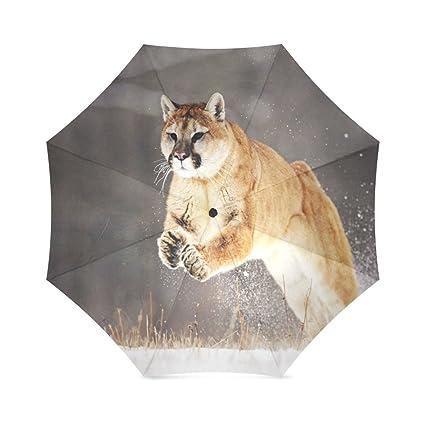 umbrella-waterproof paraguas y plegable paraguas para al aire libre Totes Paraguas, 43,