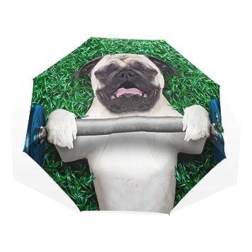 GUKENQ - Paraguas de Viaje para Perro con Puerto Ligero antirayos UV, Paraguas para Hombres