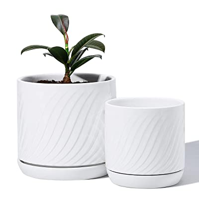 POTEY 053302 Plant Pots with Drainage Holes & Saucer - Glazed Ceramic Modern Planters Indoor Bonsai Container for Plants Flower Aloe(Set of 2-6.6 + 5.1 Inch, Shiny White, Plants Not Included) : Garden & Outdoor