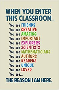 Classroom Sign When You Enter This Classroom Educational Rules Teacher Supplies School Decor Teaching Toddler Elementary Learning Teachers Motivational Light Laminated Dry Erase Wall Poster 12x18