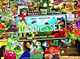 Sunsout 2019 Tennessee by Artist Kate Ward Thacker 1000 Piece Collage Jigsaw Puzzle