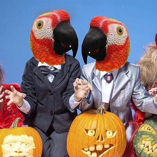 CARTEY Máscara de Loro Rojo, máscara de Cabeza de pájaro de Loro ...