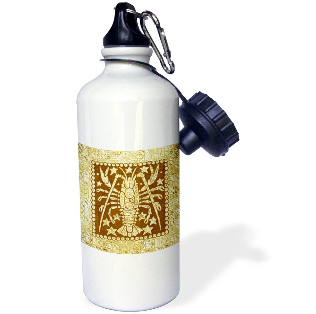 3dRose Zodiacal Constellation wb/_212243/_1 21 oz Multicolor Scorpio 21oz Gold and Brown Design-Sports Water Bottle