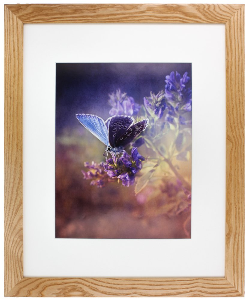 GALLERY SOLUTIONS 16x20 American Hardwood Wall Picture Frame with White Mat For 11x14 Image