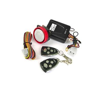 Tntor 187146 Alarma para motocicleta y ciclomotor: Amazon.es ...