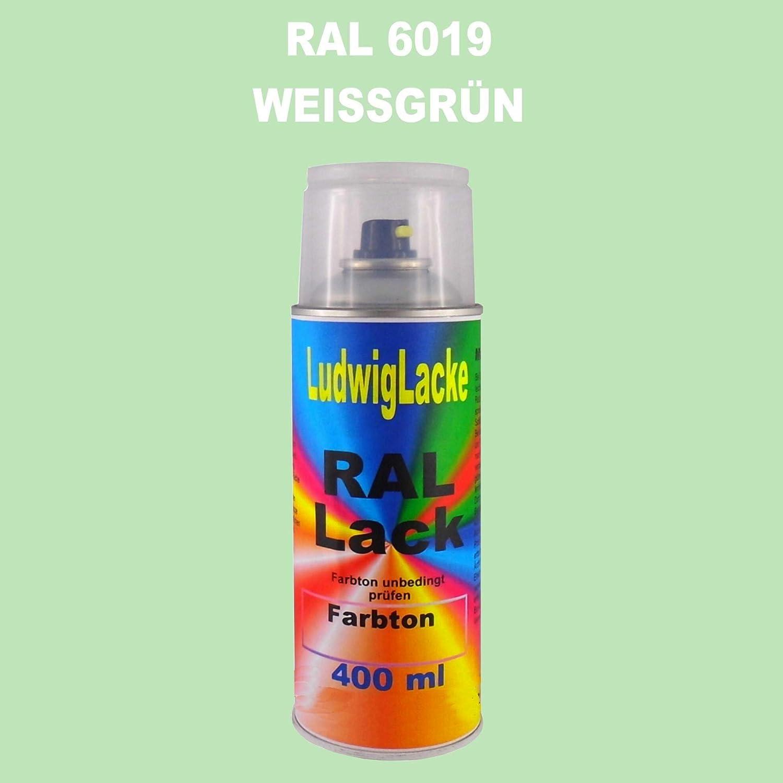 Ral 6019 Weissgrün Seidenmatt 400 Ml 1k Spray Auto